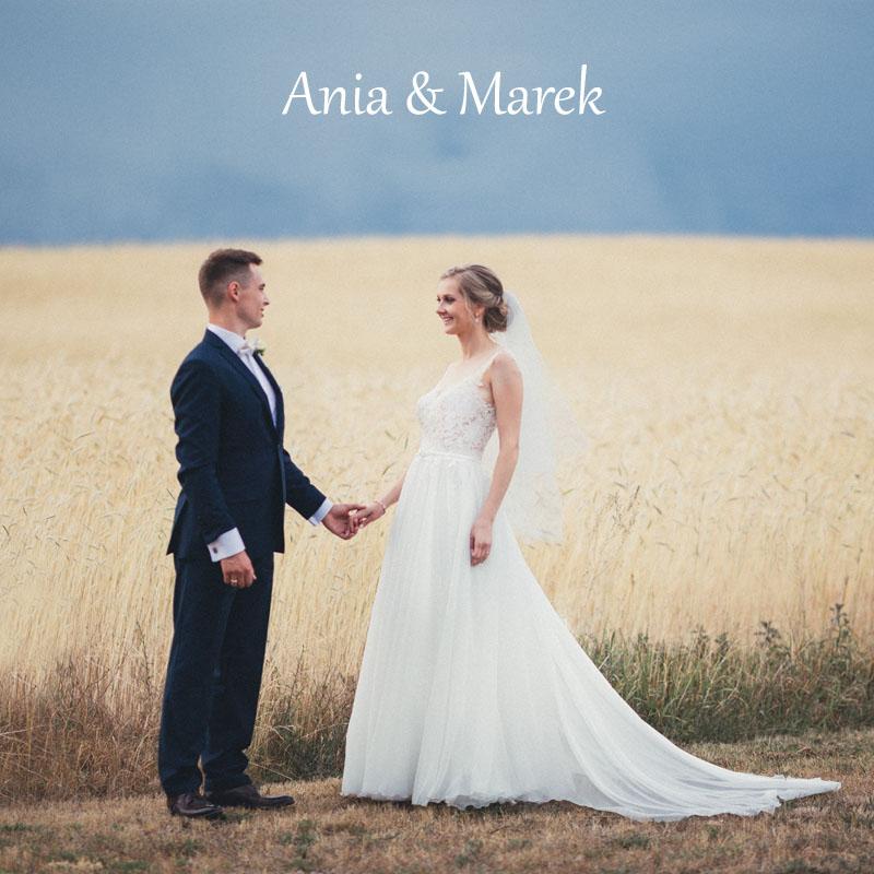 Ania_i_Marek_0453 copy